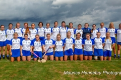 Waterford v Wexford Premier Junior All Ireland Camogie Championship Round 2
